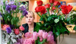 В квітковій мережі міста Шостка виявлено 7 неоформлених працівників